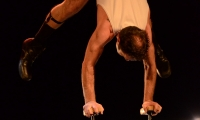 spectacle-de-gala-oedm-2014-45