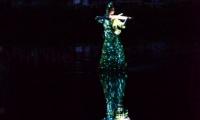 Puy du Fou - Jets d eau de nuit (05)