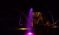 Puy du Fou - Jets d eau de nuit (07)