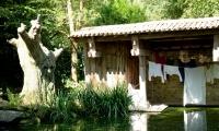 Puy du Fou - La Fontaine (07)
