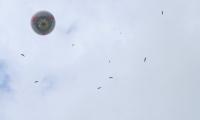 Puy du Fou - Le bal des oiseaux fantomes (074)