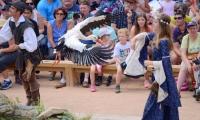 Puy du Fou - Le bal des oiseaux fantomes (098)