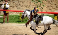 Puy du Fou - Le secret de la lance (10)