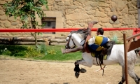 Puy du Fou - Le secret de la lance (11)