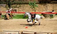 Puy du Fou - Le secret de la lance (09)
