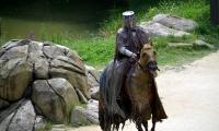 Puy du Fou - Les chevaliers de la table ronde (10)