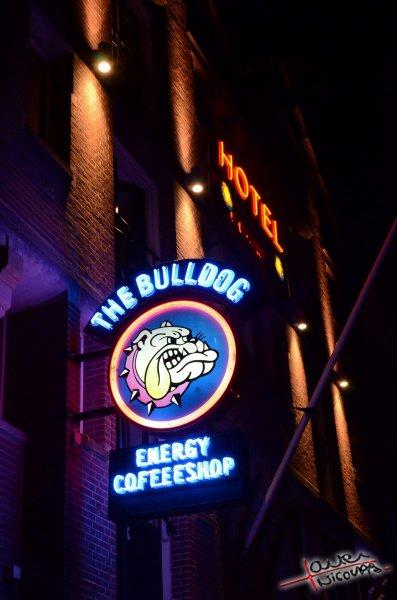 Amsterdam de Nuit (19)